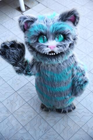 Кот из Страны Улыбок
